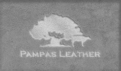 Pampas Leather
